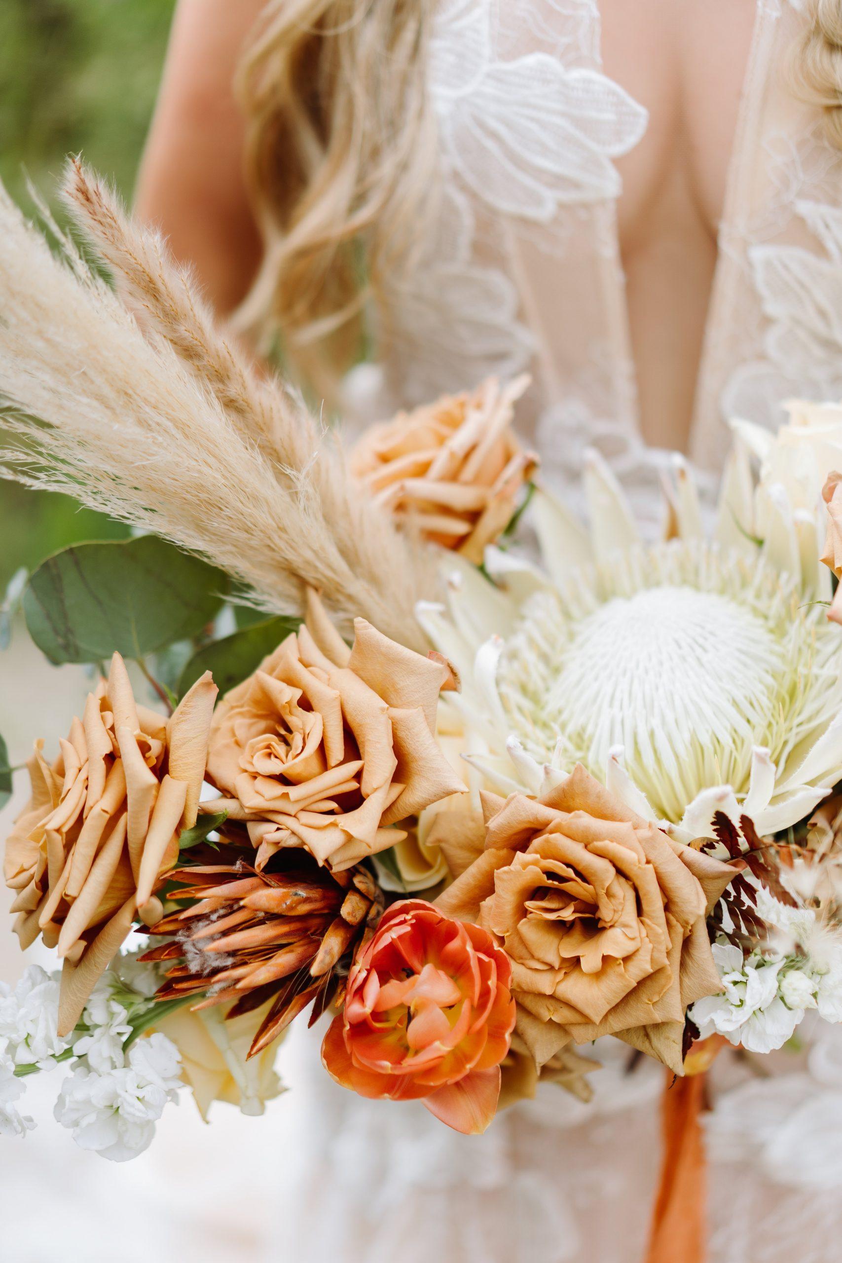 green bay wedding photographer carlee secor senior photographer